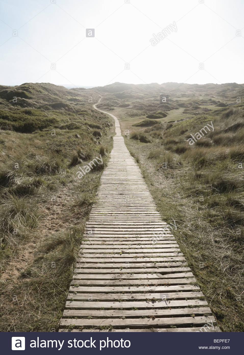 Decking camino sinuoso lejos Imagen De Stock
