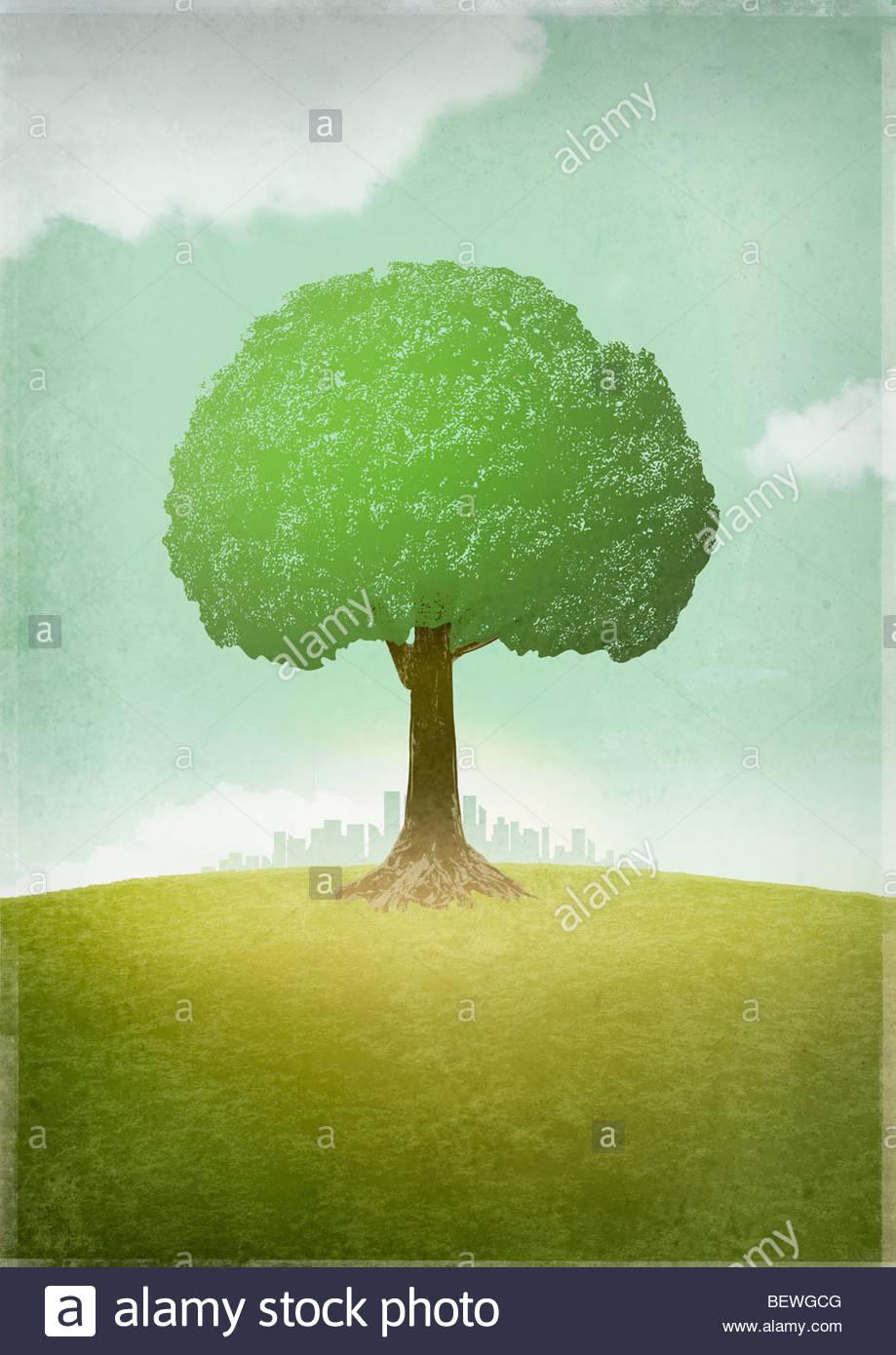 Lone Tree está lejos de la ciudad Imagen De Stock