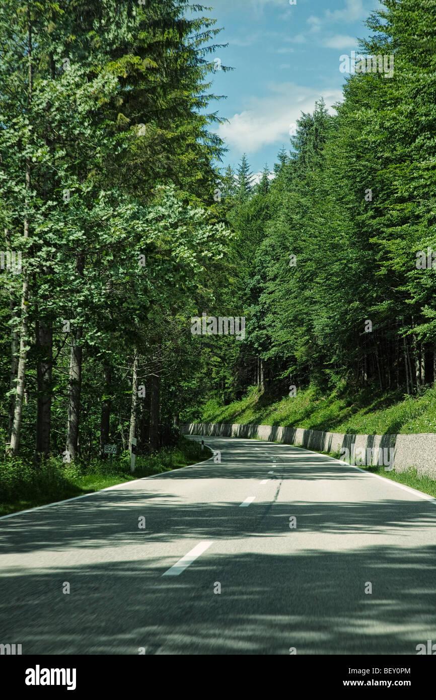 Viajando a lo largo de un camino abierto a través de un bosque de Baviera Alemania Europa en un viaje por carretera Imagen De Stock