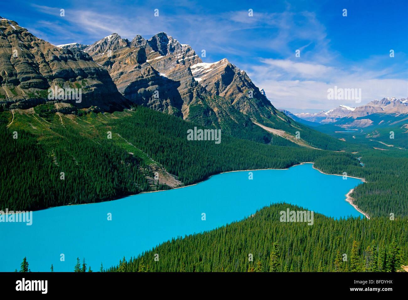 Un alto ángulo de vista del Lago Peyto, Icefields Parkway, Parque Nacional de Banff, Alberta, Canadá Imagen De Stock