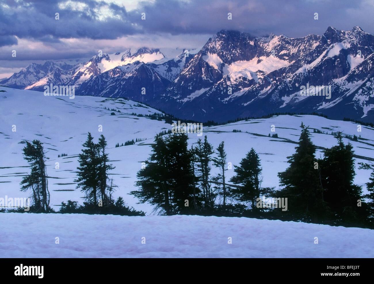Cara oriental del Monte Columbia, el Parque Nacional de Los Glaciares, British Columbia, Canadá Imagen De Stock
