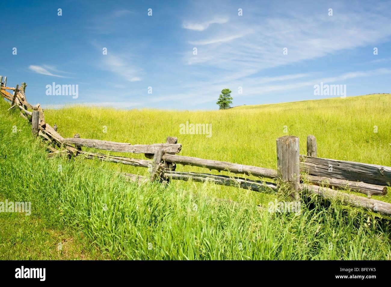 Ferrocarril valla, Niagara Escarpment cerca de Terra Noiva, Ontario, Canadá Foto de stock