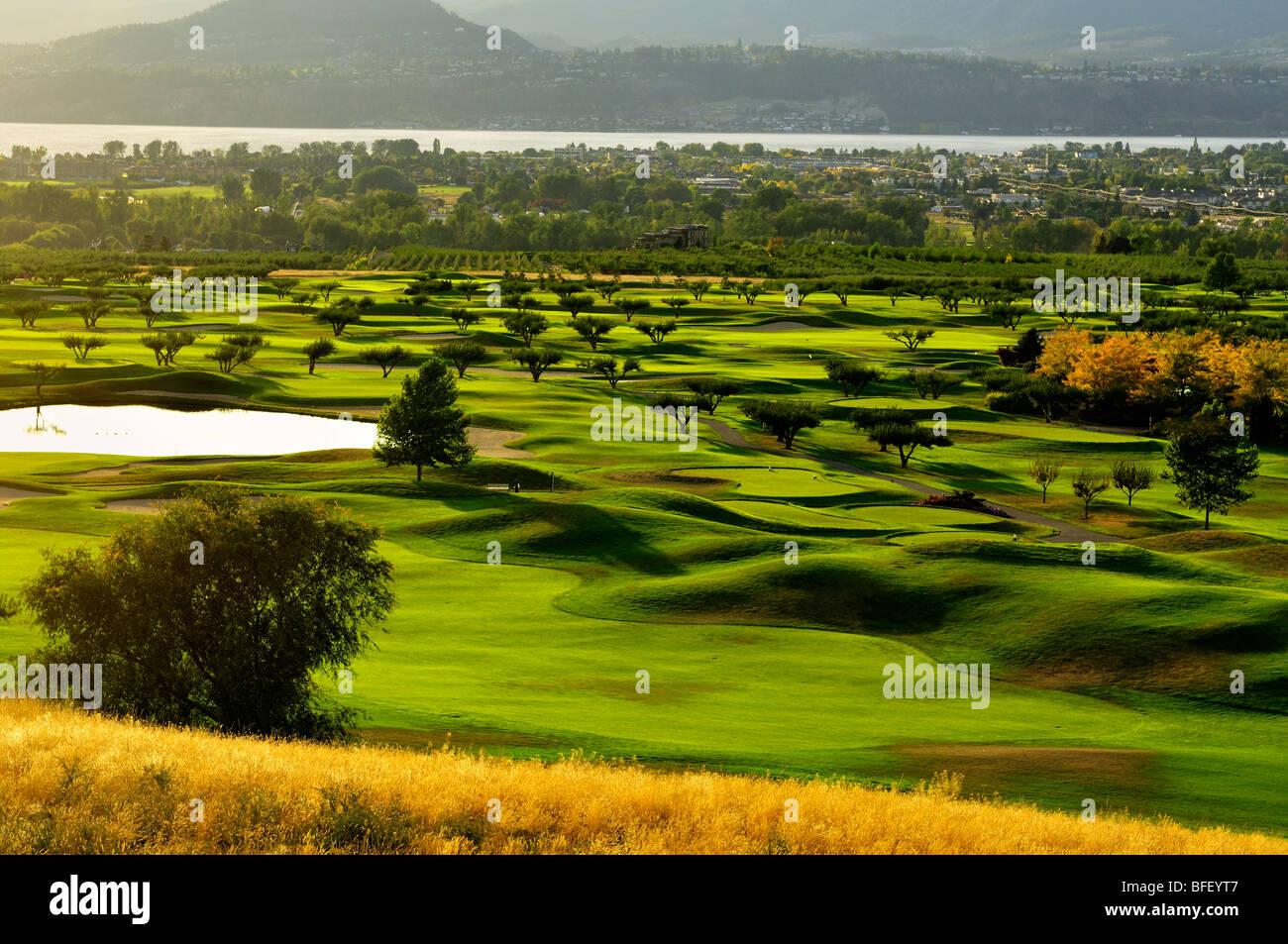Orchard Green Golf Club cerca de Kelowna, BC Foto de stock