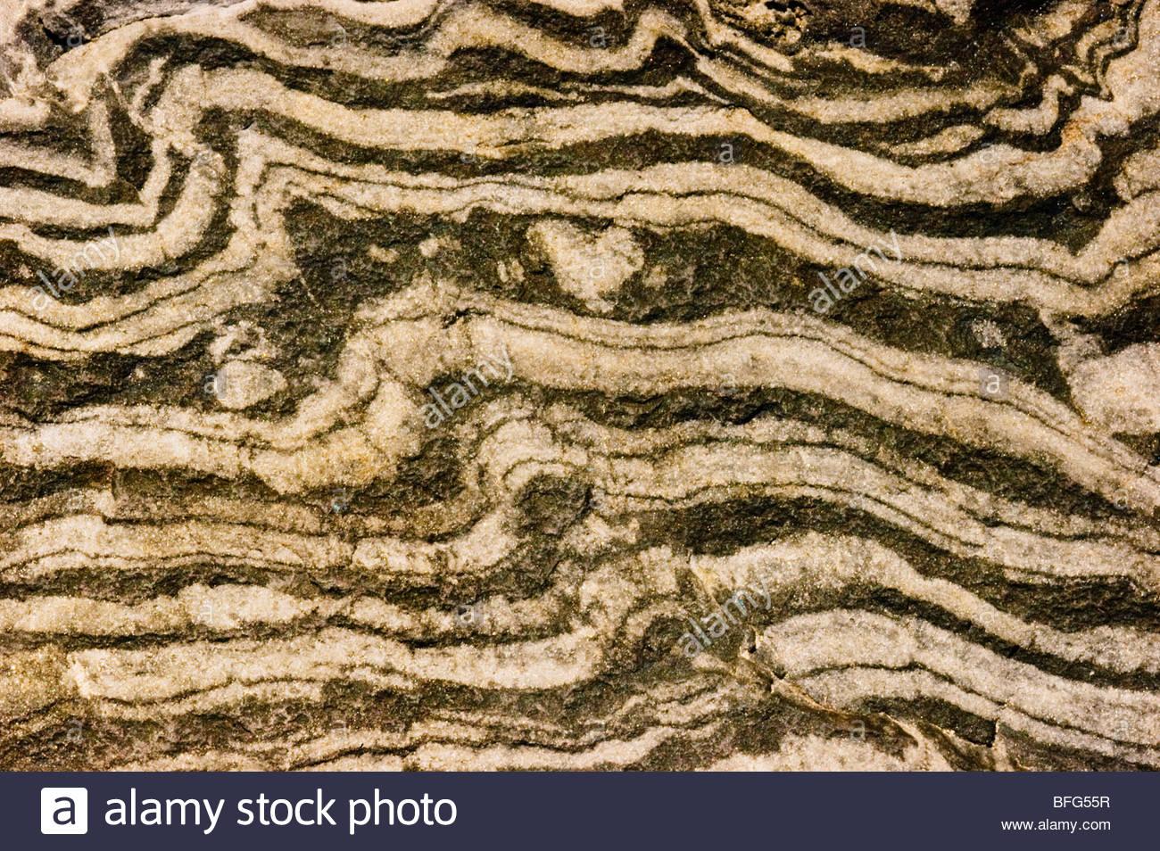 La superficie más antigua roca, Naturalis el Museo Nacional de Historia Natural de Leiden, Países Bajos Imagen De Stock