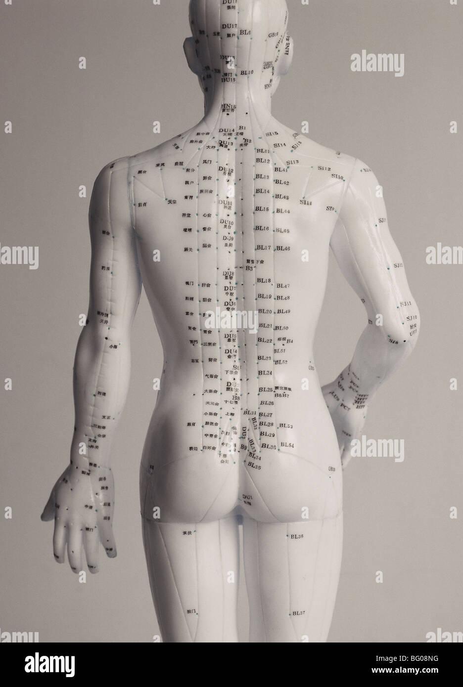 Los puntos de acupuntura, Medicina China Imagen De Stock
