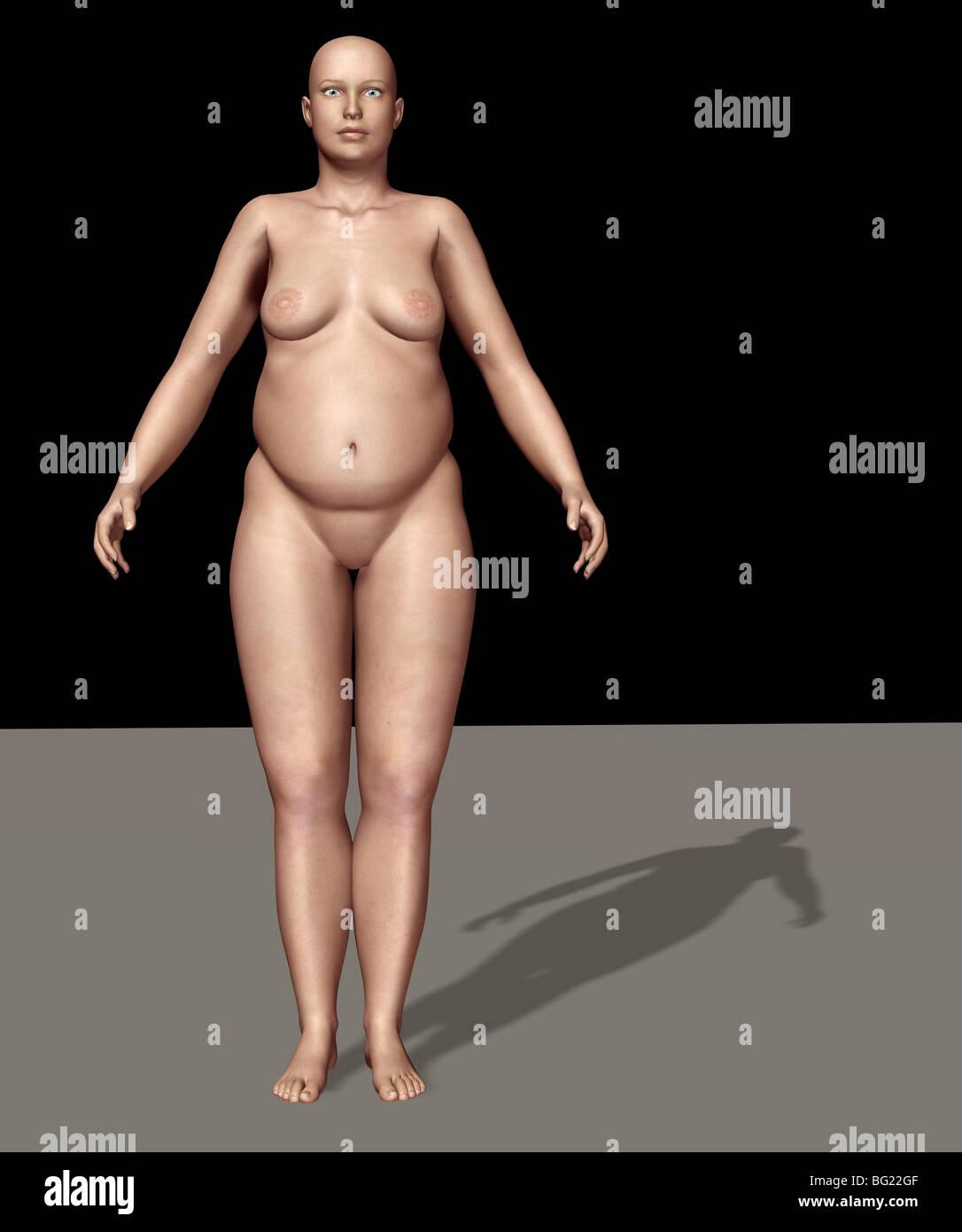 Ilustración de un cuerpo humano femenino tipo: endomorfo Foto ...