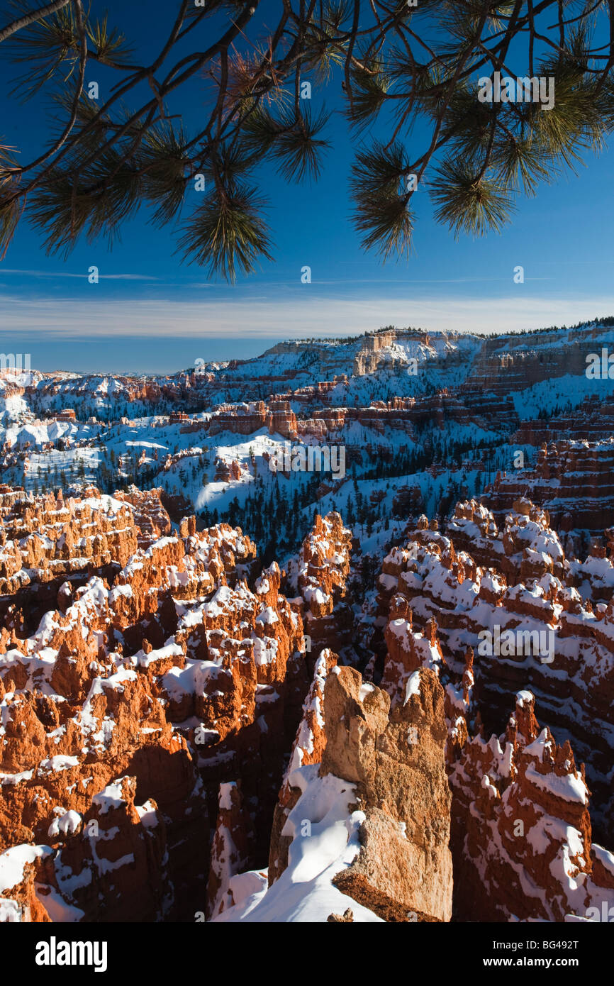 Estados Unidos, Utah, Bryce Canyon, Parque Nacional Bryce Anfiteatro entre el amanecer y el atardecer, el invierno Imagen De Stock