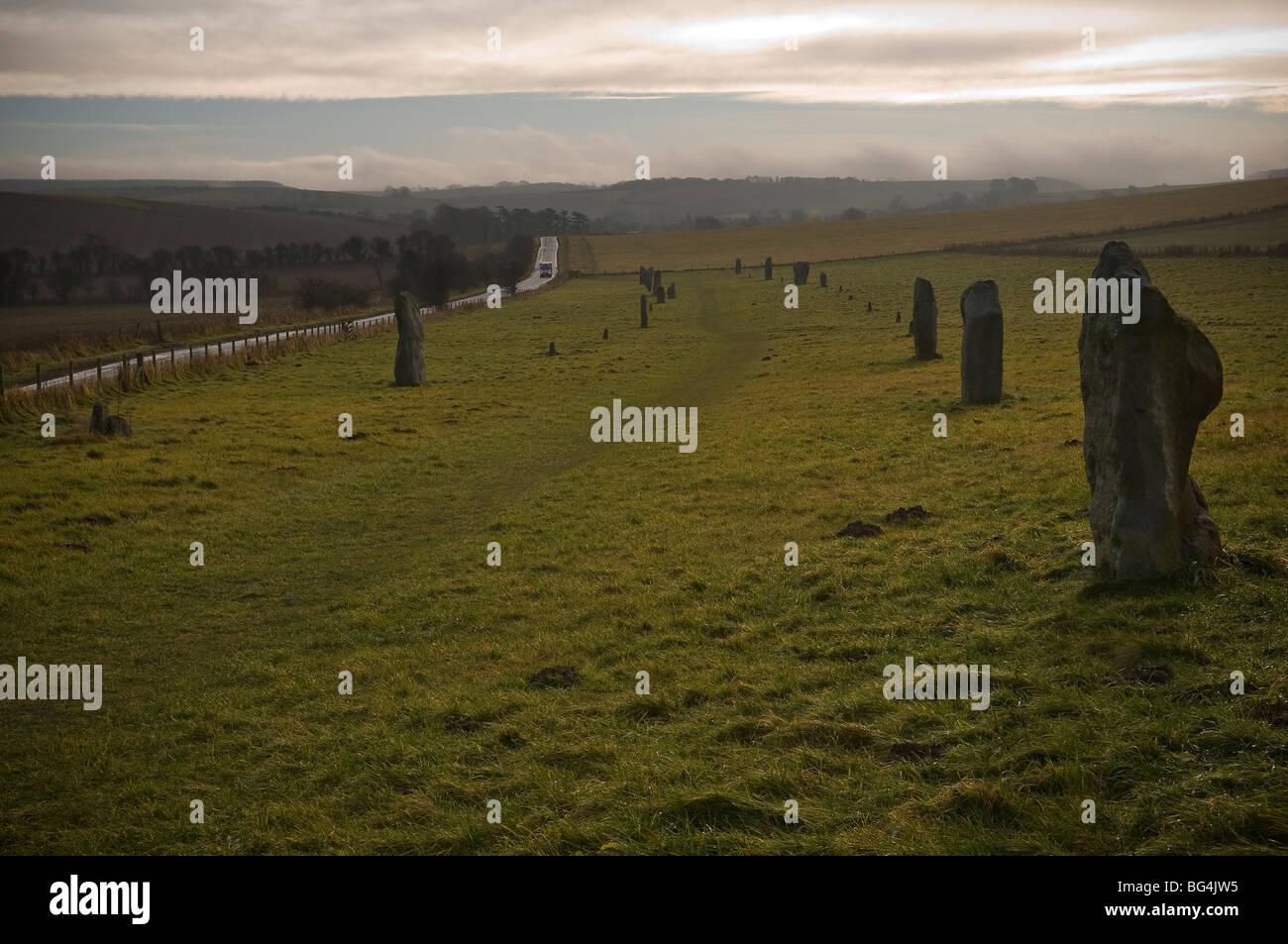 La avenida de piedras Sarsen principales del círculo de piedra de Avebury Neolítico en Wiltshire, REINO UNIDO Foto de stock