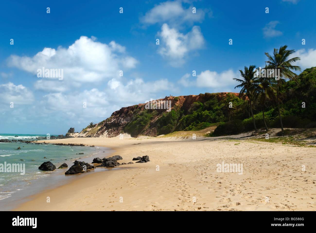 Hermosa playa con palmeras a Praia do Amor cerca de Pipa Brasil Imagen De Stock