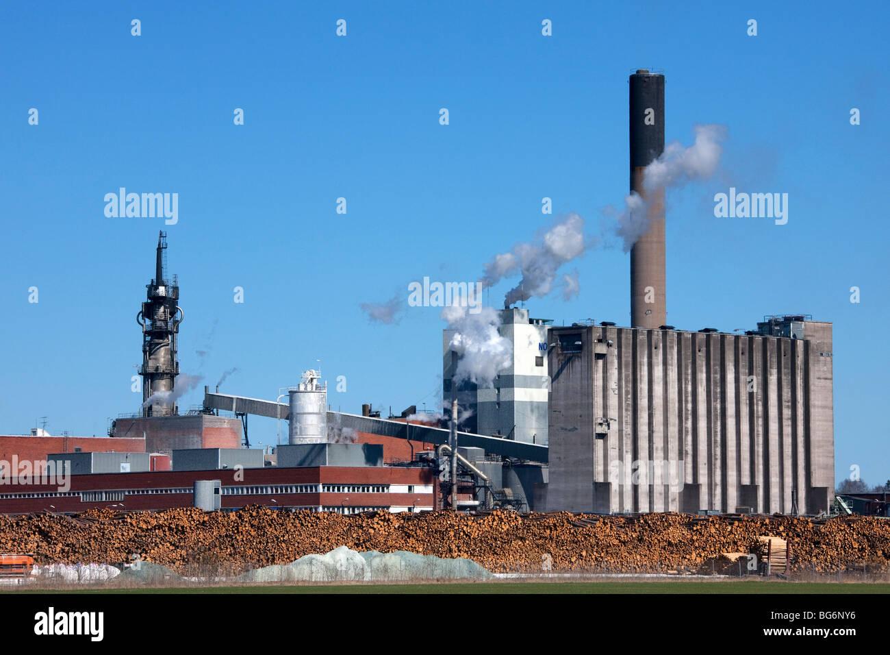 Pilotes de madera de pino apilados de industria maderera en frente de la fábrica de pasta y papel, Suecia Imagen De Stock