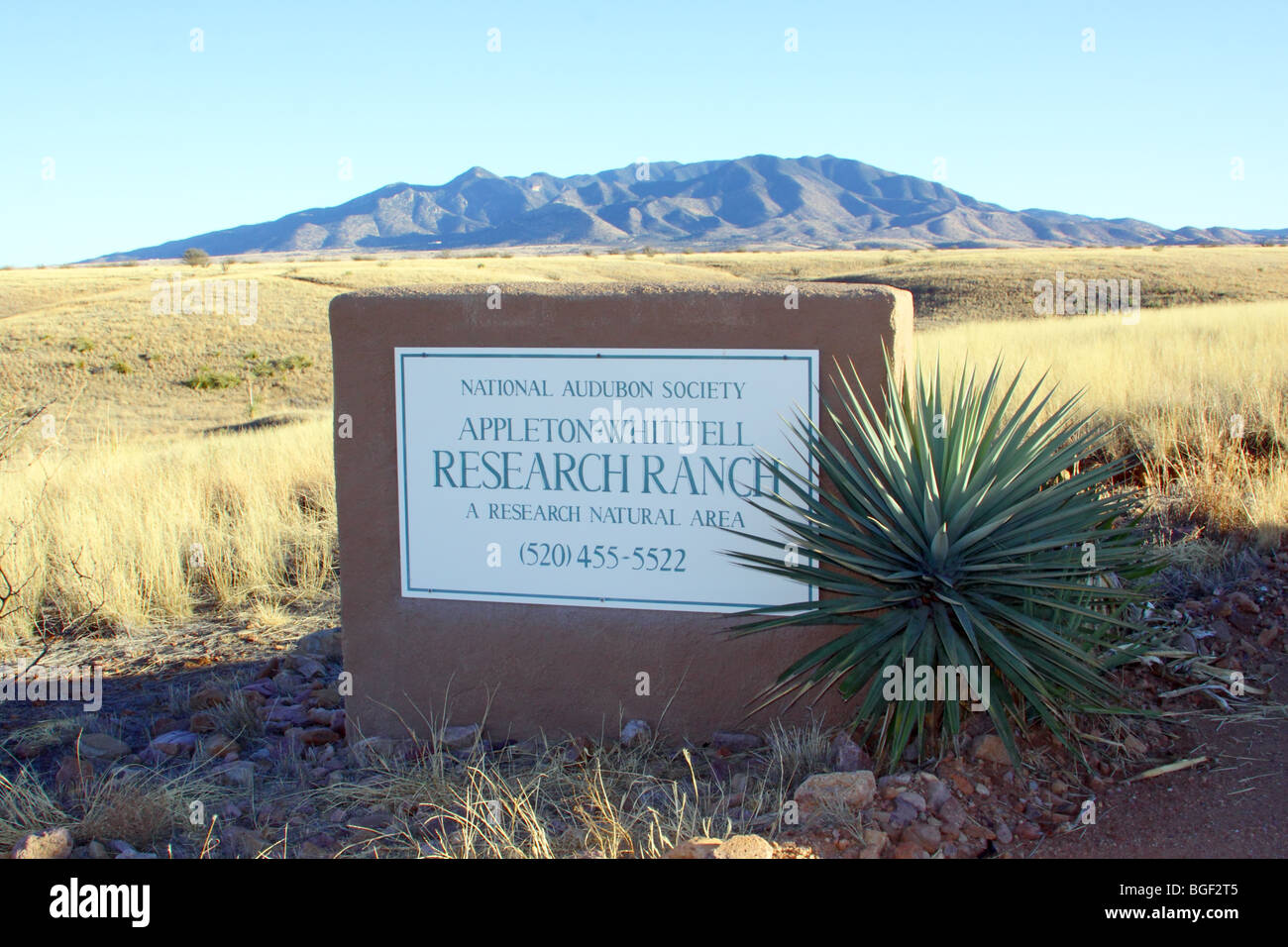 Puerta norte de la Sociedad Nacional Audubon Appleton-Whittell Research Ranch cerca de Elgin, Arizona, Estados Unidos. Imagen De Stock