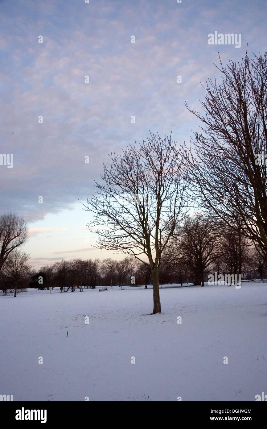 Clapham Common en la nieve. Imagen De Stock