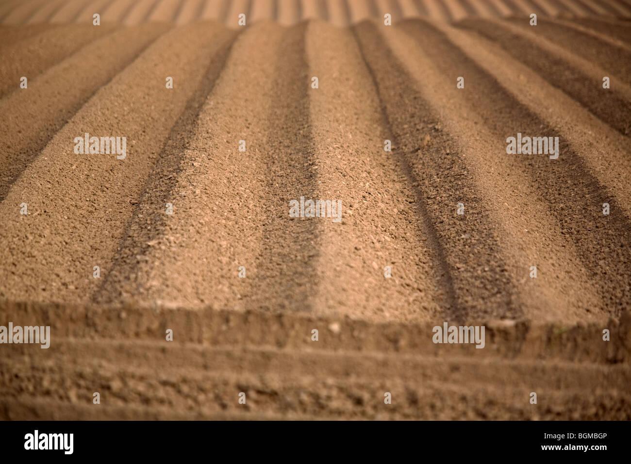 Los patrones en el suelo hechas por la agricultura Imagen De Stock