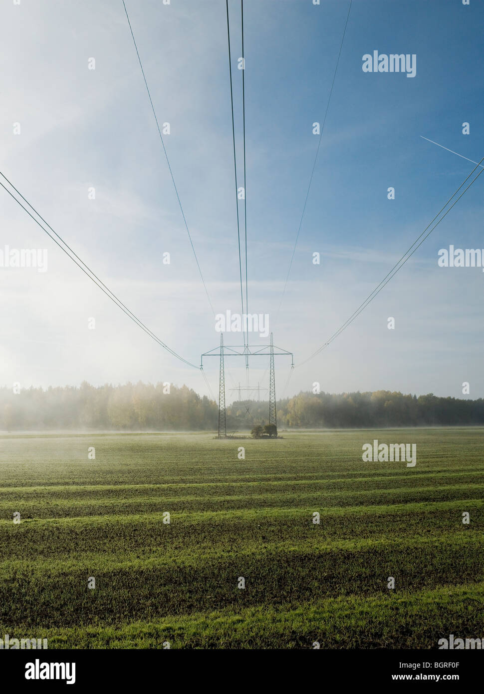 Las líneas eléctricas por encima de un campo de niebla, Suecia. Imagen De Stock