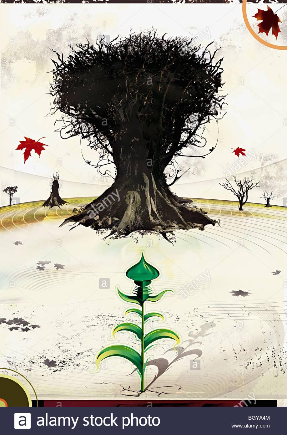 Árbol Muerto en el campo Imagen De Stock