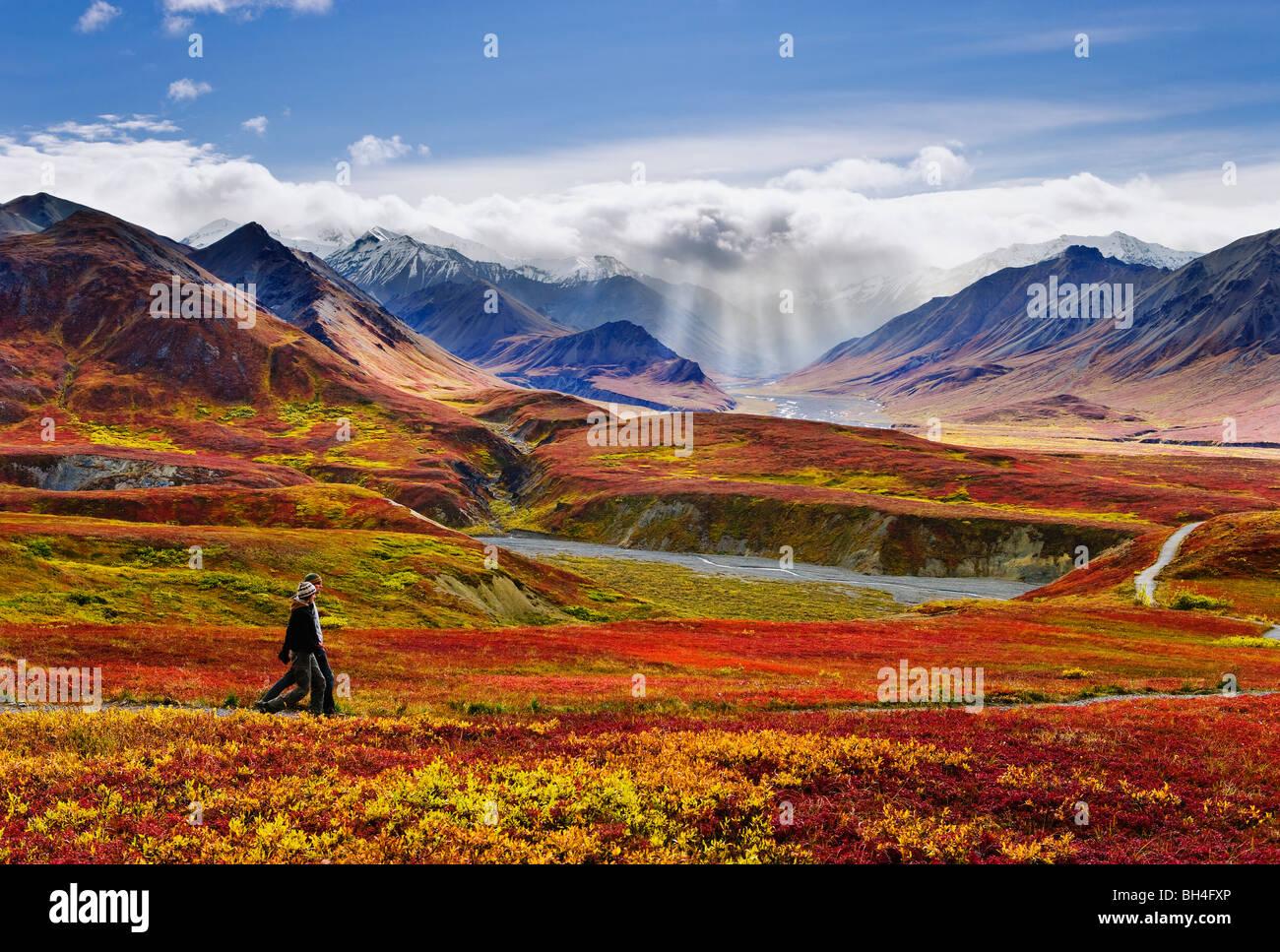 Los excursionistas, colores de otoño y la Cordillera de Alaska, el Parque Nacional Denali, Alaska Imagen De Stock