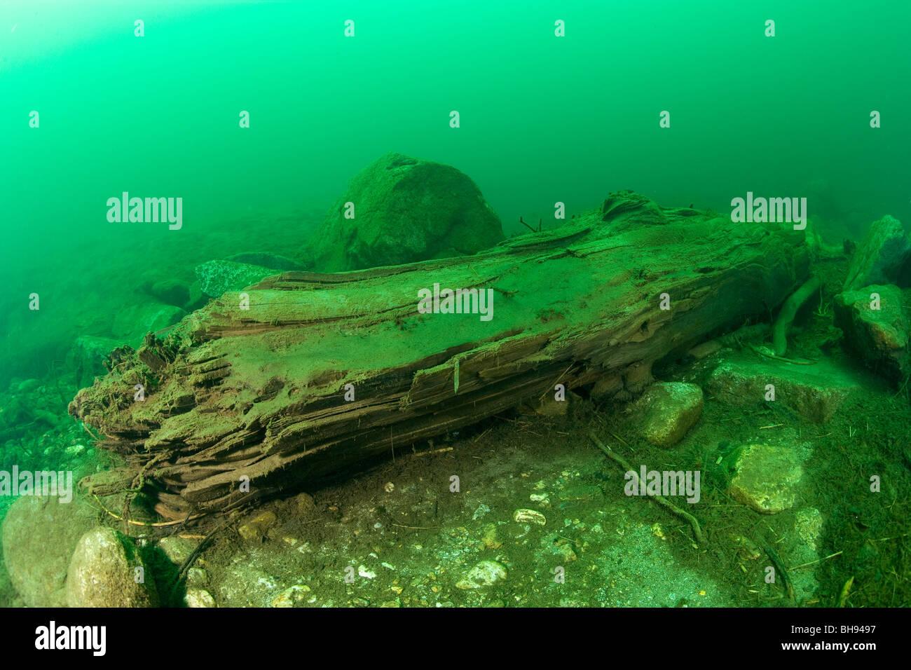 Registro de árbol en el Lago del Sambuco, Valle Lavizzara, Tesino, Suiza Foto de stock