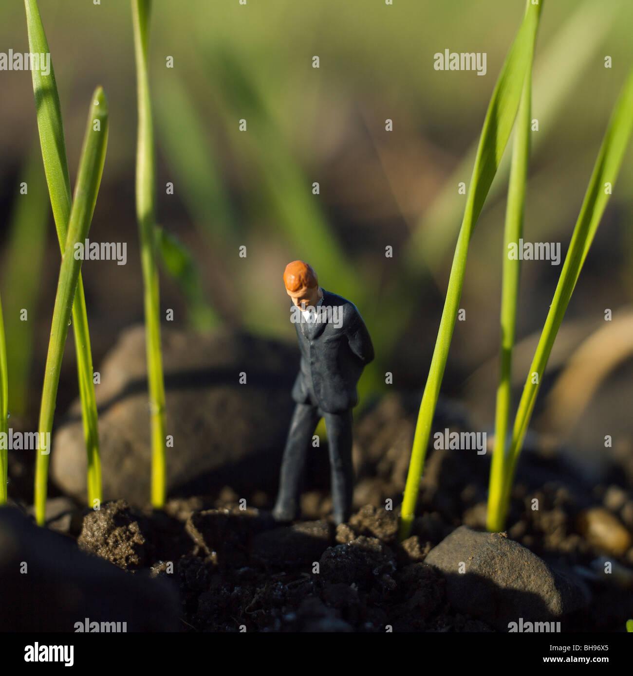 Empresario figurita de hombre en el medio de un campo de cereales - industria y negocios agrícolas concepto Imagen De Stock