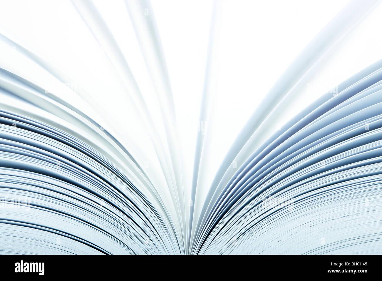 Macro de un libro abierto con páginas pasando- el enfoque selectivo Imagen De Stock