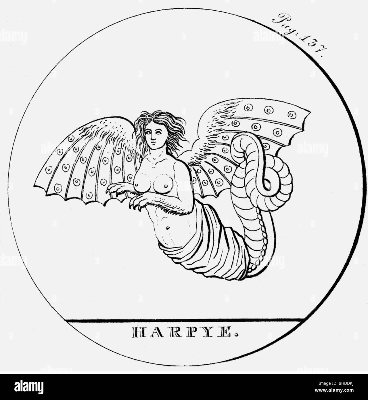 Arpías, criaturas míticas griegas (mitad mujer, mitad pájaro), grabado, del siglo xix, Additional Imagen De Stock