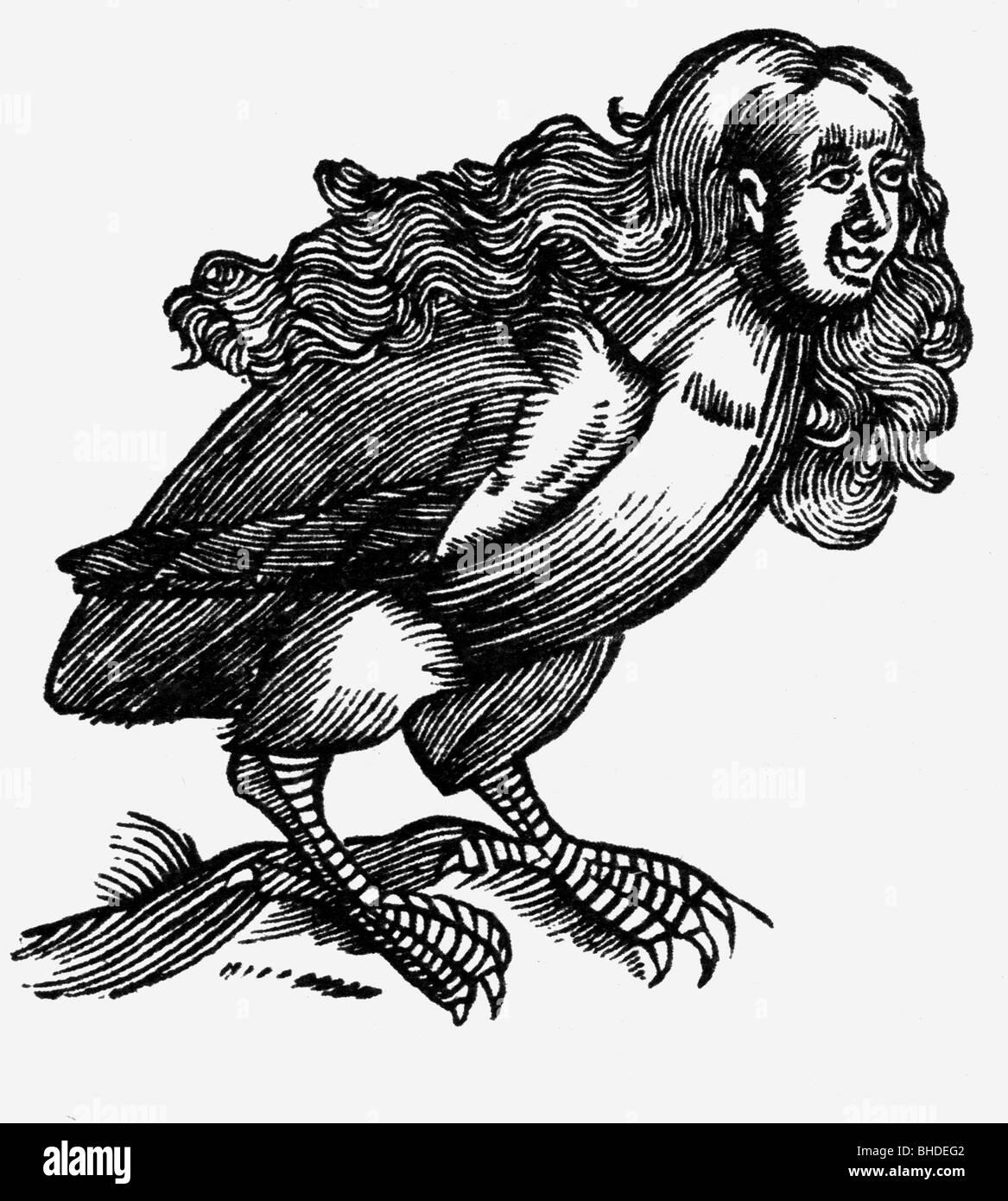 Arpías, criaturas míticas griegas (mitad mujer, mitad pájaro), xilografía, alrededor del siglo Imagen De Stock