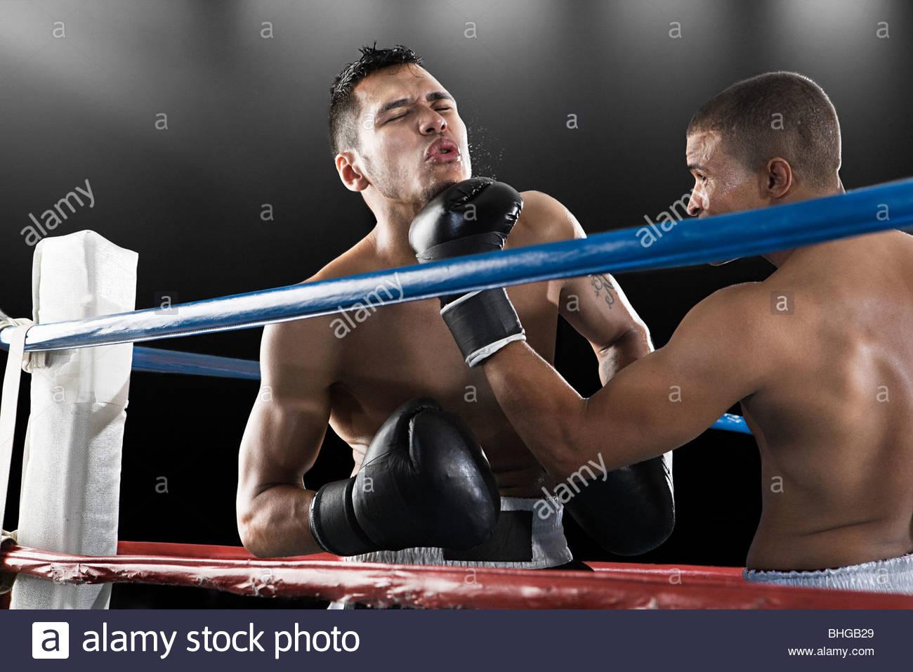 Combate de boxeo en acción Imagen De Stock