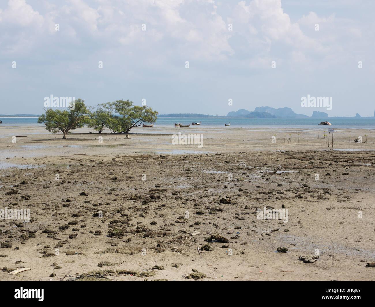 El reflujo en Rai Leh,Mar Andaman,Tailandia Foto de stock