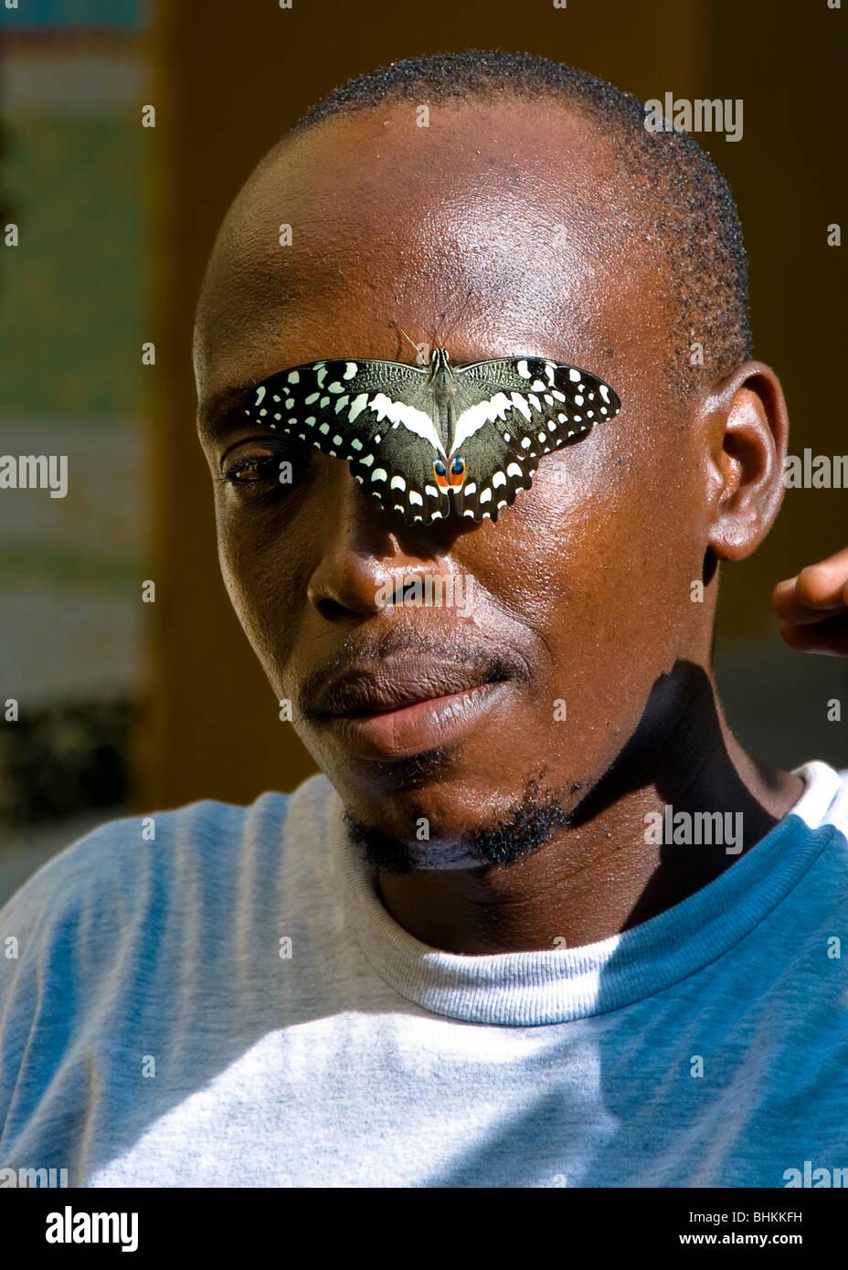 Hombre con Mariposa, Kipepeo Butterfly House, las ruinas de Gedi, Kenya, Africa. Imagen De Stock