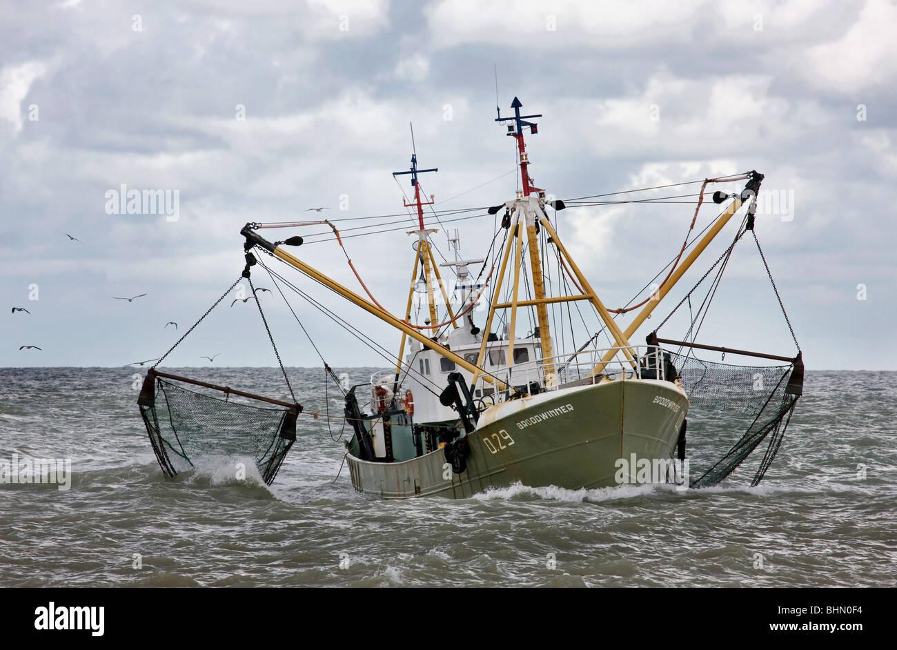 Arrastrero / barco de pesca en el Mar del Norte, arrastrando las redes de pesca, Oostende, Bélgica Foto de stock