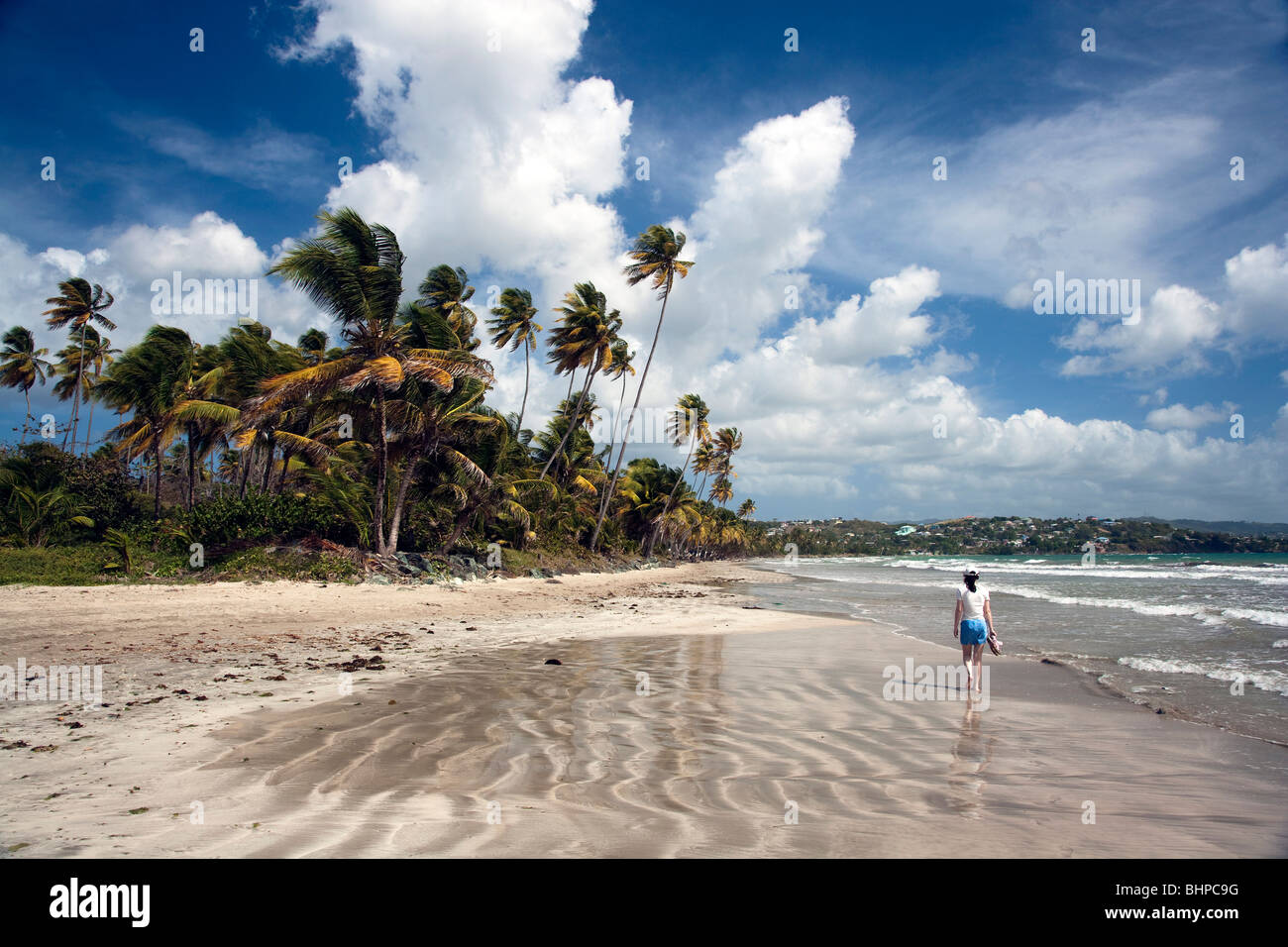 Chica caminando por la playa del Caribe de arena espectacular cielo azul con palmeras de soplado y surf retrocediendo Imagen De Stock