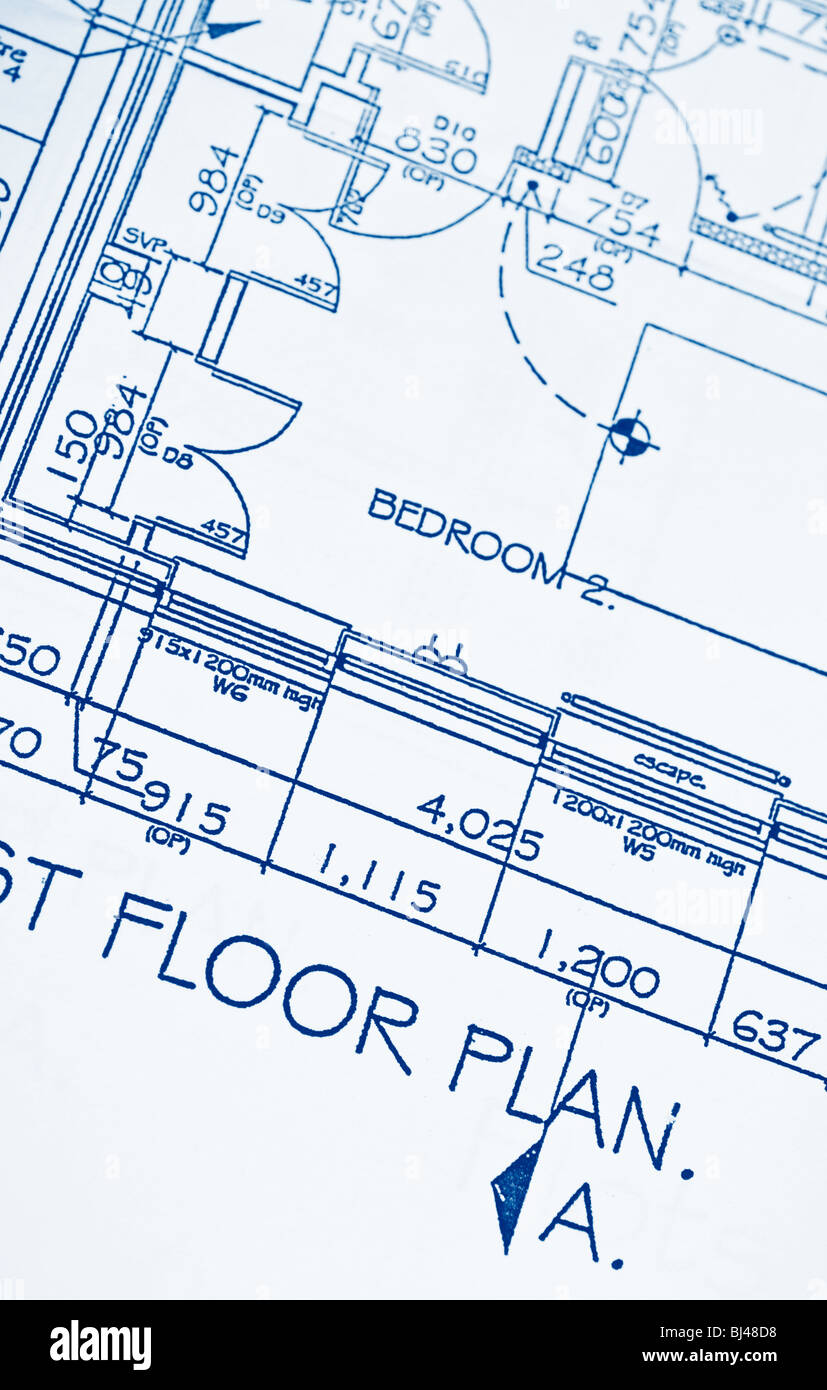 Planos de planta Imagen De Stock