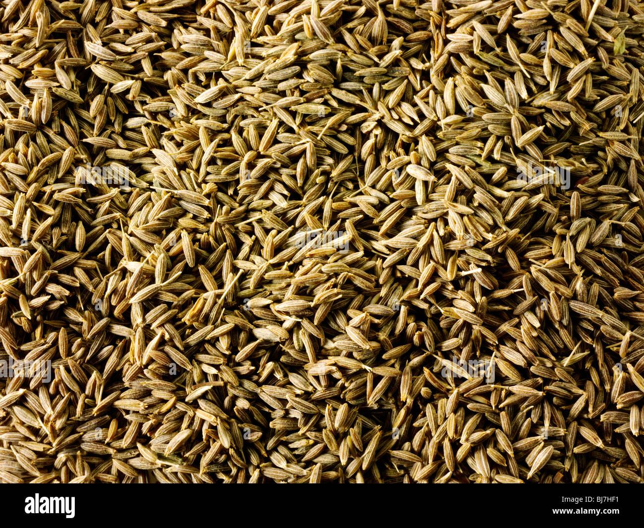 Conjunto de semillas de comino, cerca de fotograma completo Imagen De Stock