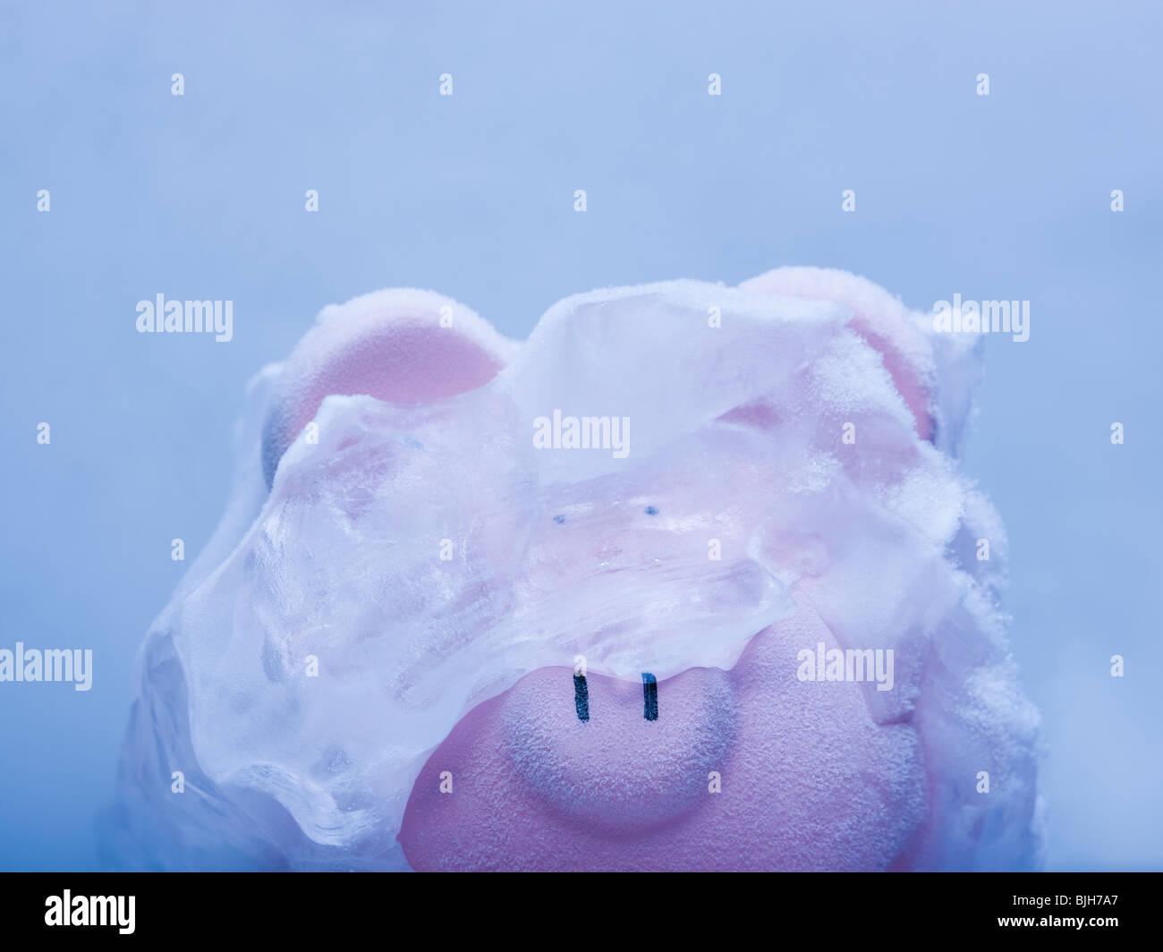 Hucha cubierto de hielo Imagen De Stock