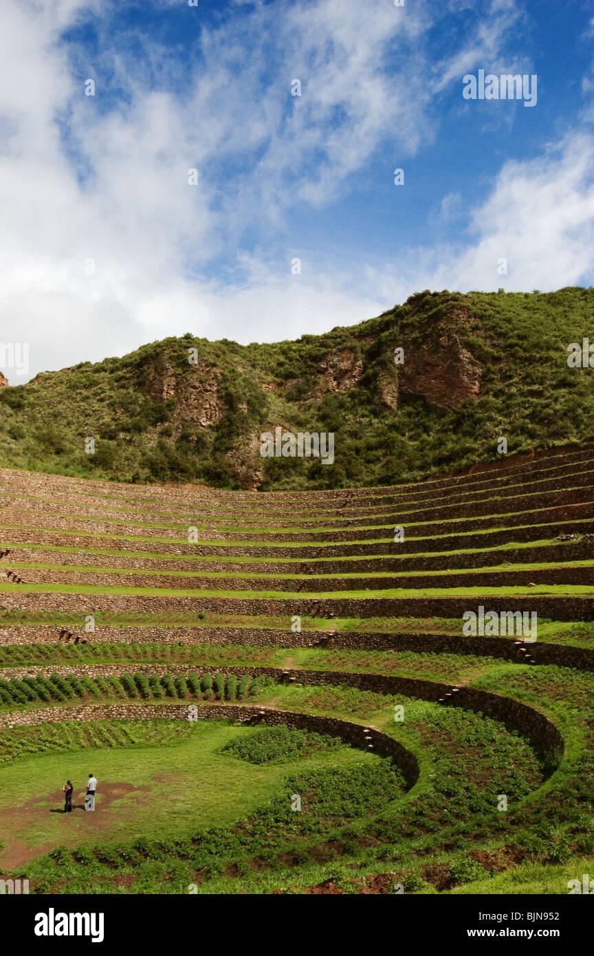 Terrazas De Cultivo Inca Moray Perú Foto Imagen De Stock