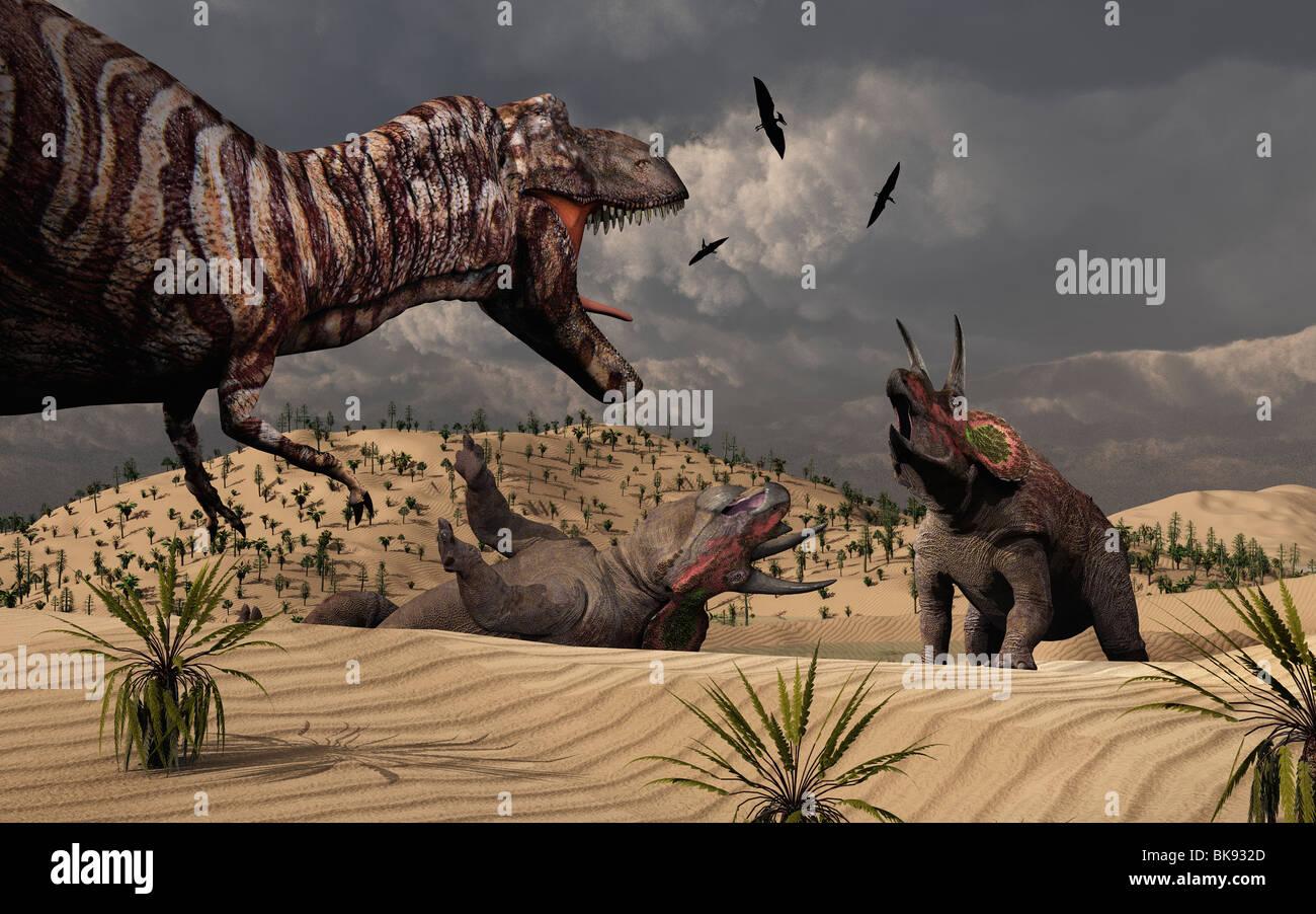 El enfrentamiento entre un T.Rex y Triceratops dinosaurios. Imagen De Stock