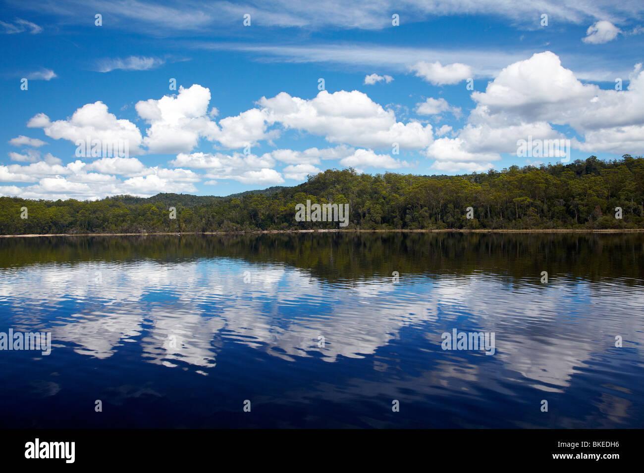 Reflexiones en Macquarie Harbour cerca de la desembocadura del río Gordon, - Franklin Gordon Wild Rivers National Imagen De Stock
