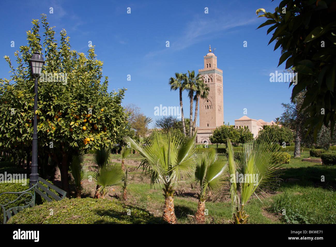 La mezquita Koutoubia y el minarete de la Koutoubia jardines con palmeras, naranjos, lámpara de sobremesa y con un cielo azul Foto de stock
