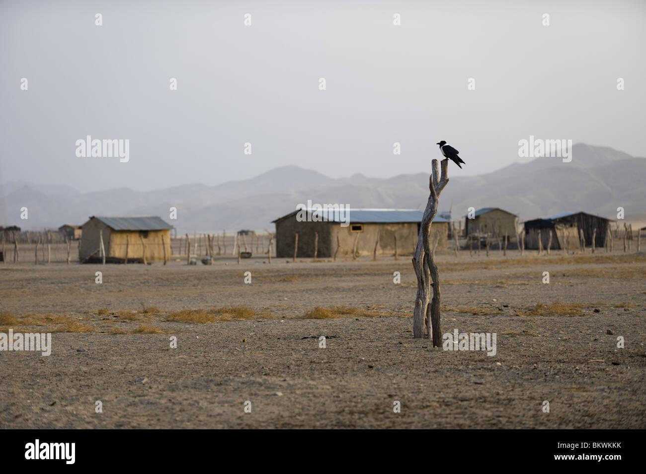 Pueblo Purros, Kaokoland, región Kunene, Namibia. Foto de stock