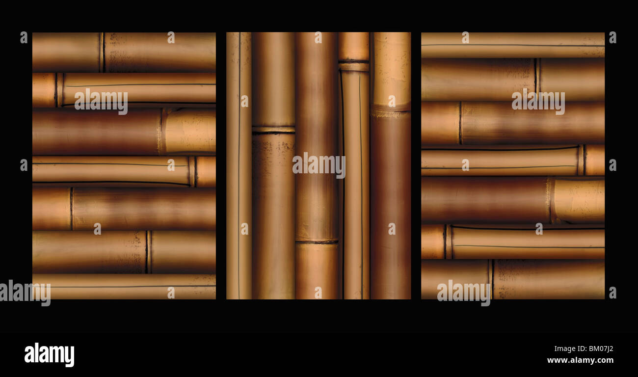 Bambú Imagen De Stock