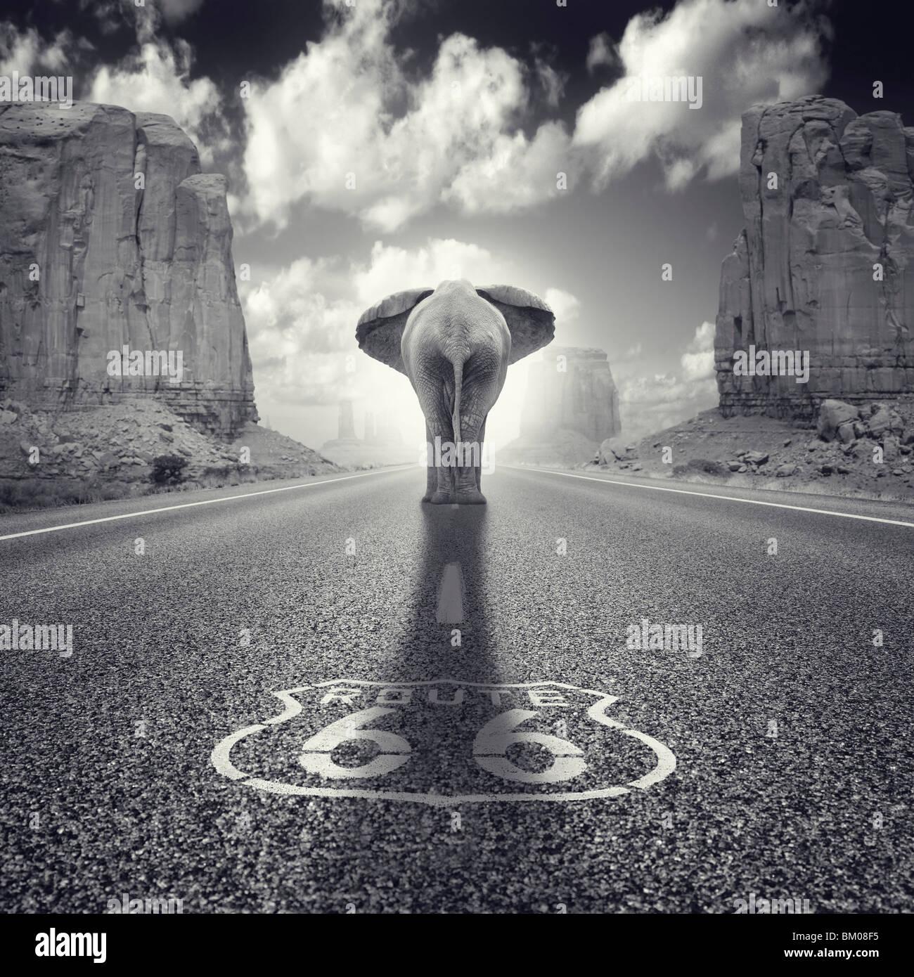 Un elefante caminando a lo largo de la ruta 66 en EE.UU. Monument valley Foto de stock