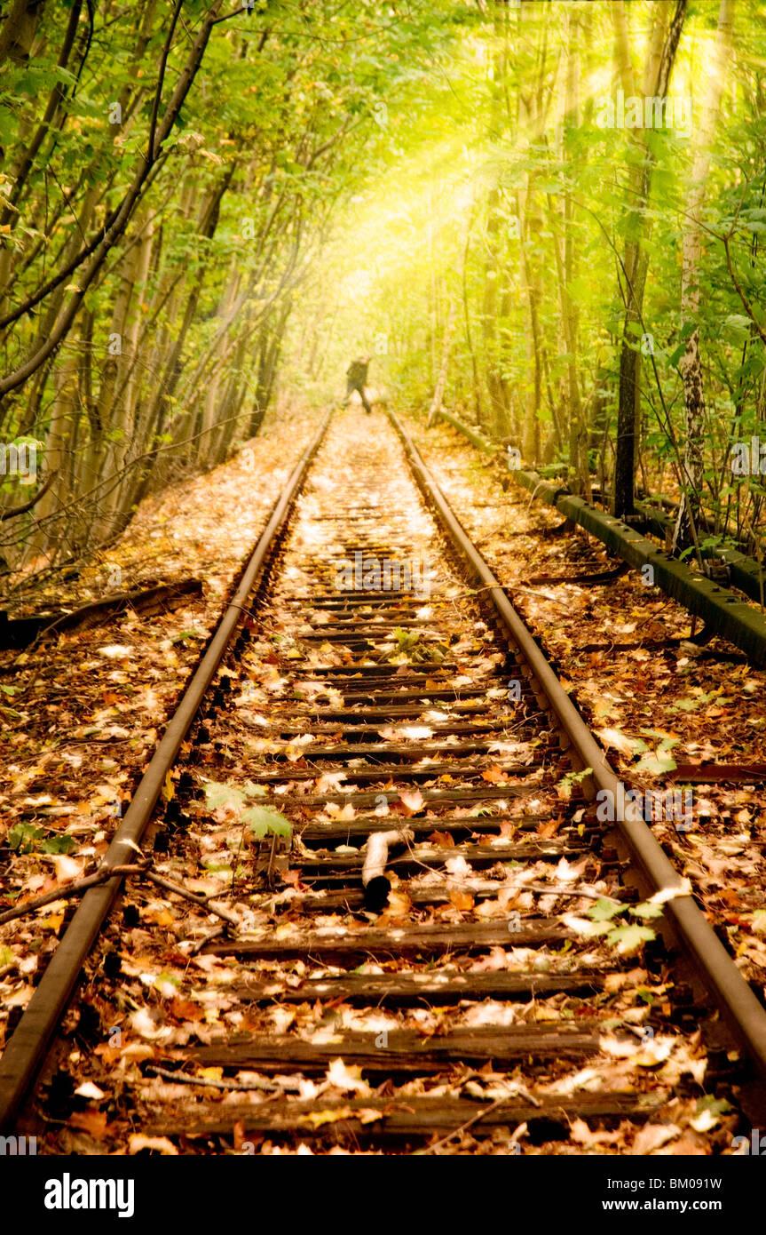 Antigua línea de ferrocarril no usados desde los 80s en Berlín corriendo a través de bosques con Imagen De Stock