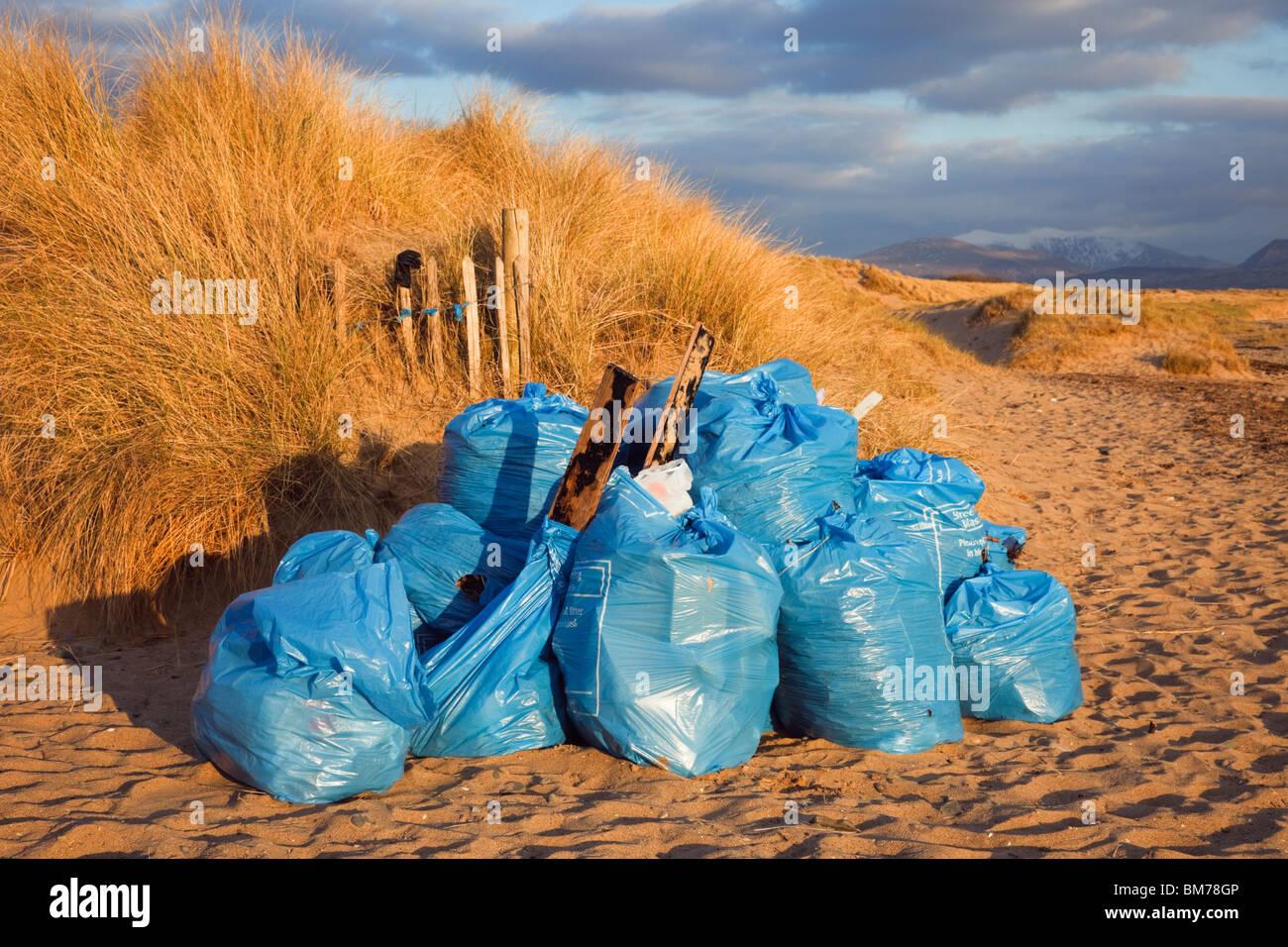 Bolsas de basura recolectada en la playa. Foto de stock