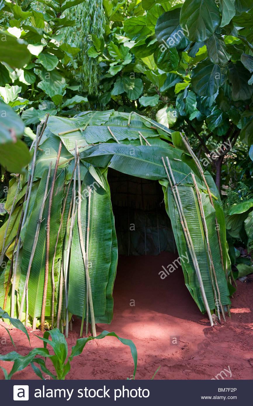 Green & Black's Rainforest jardín diseñado por Jane Owen con Ann-Marie Powell Imagen De Stock