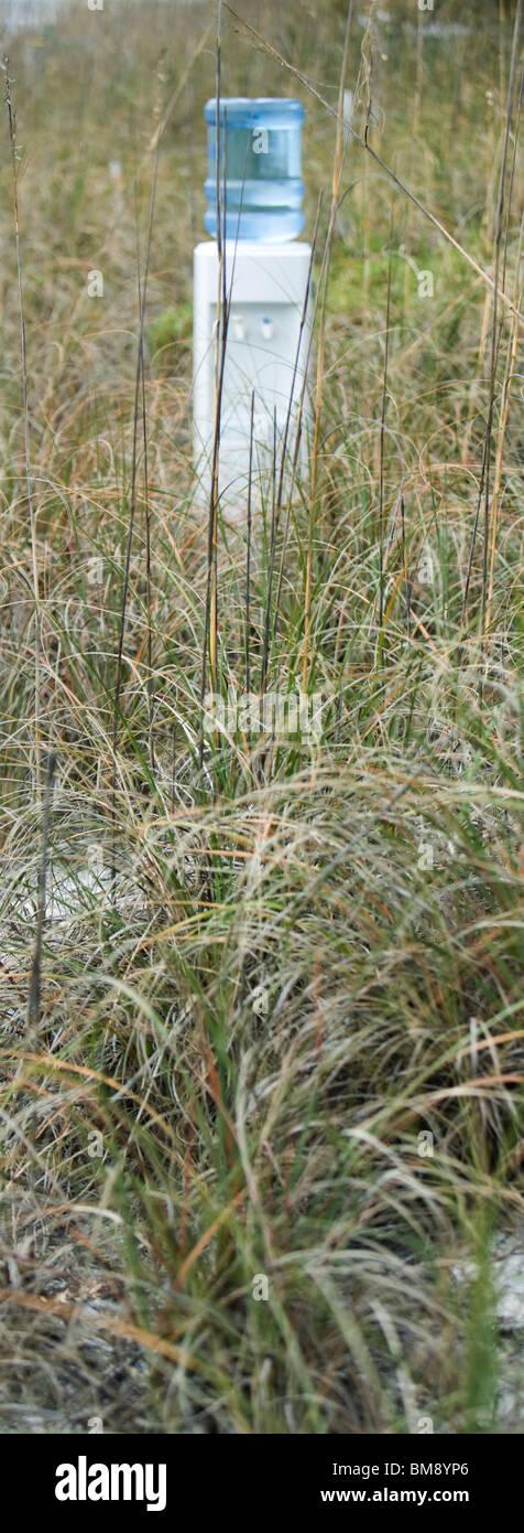 Enfriador de agua en el campo de hierba seca Imagen De Stock