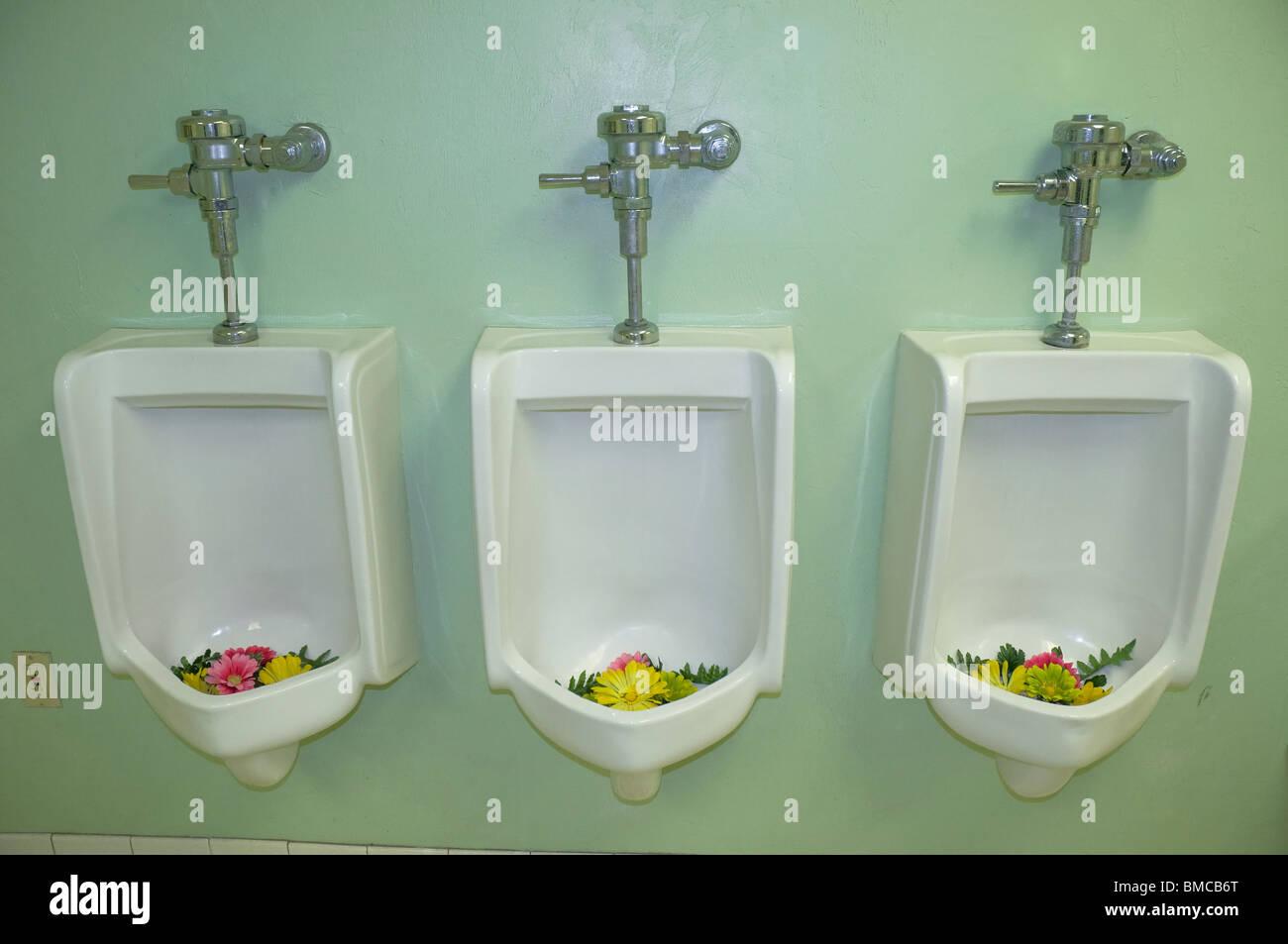 Las mujeres toman más de baño para hombres e instalar flores en urinarios Imagen De Stock