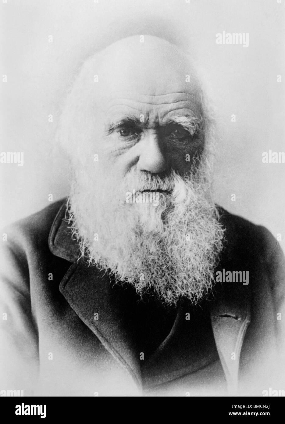 Foto retrato Vintage circa 1870 de Charles Darwin (1809 - 1882) - el naturalista inglés famoso por su teoría Imagen De Stock