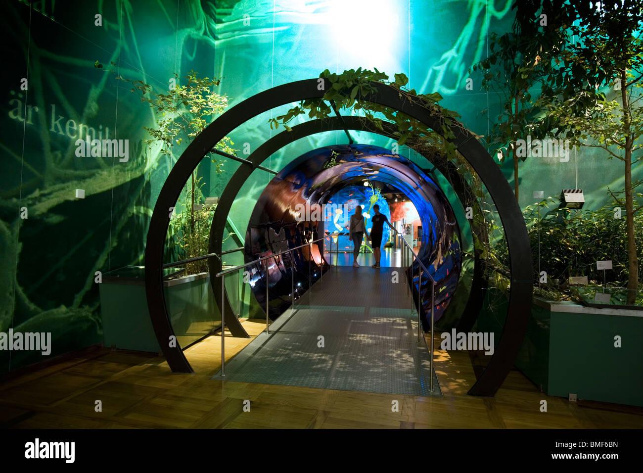 Sección de Biología entrada en el Deutsches Museum, la Museumsinsel, Munich, Alemania Imagen De Stock