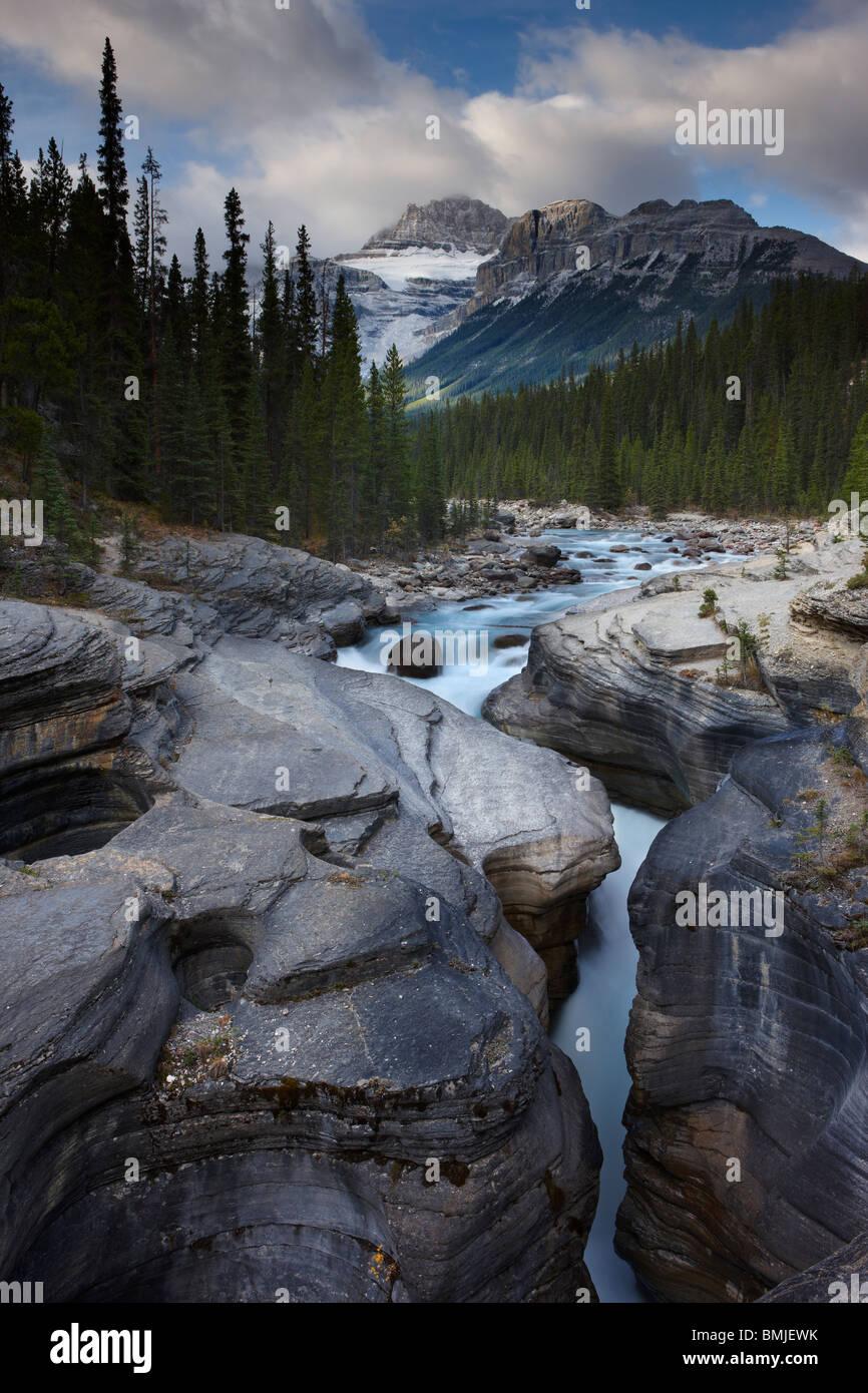 Cañón Mistaya al amanecer, nr Saskatchewan Crossing, Parque Nacional de Banff, Alberta, Canadá Imagen De Stock