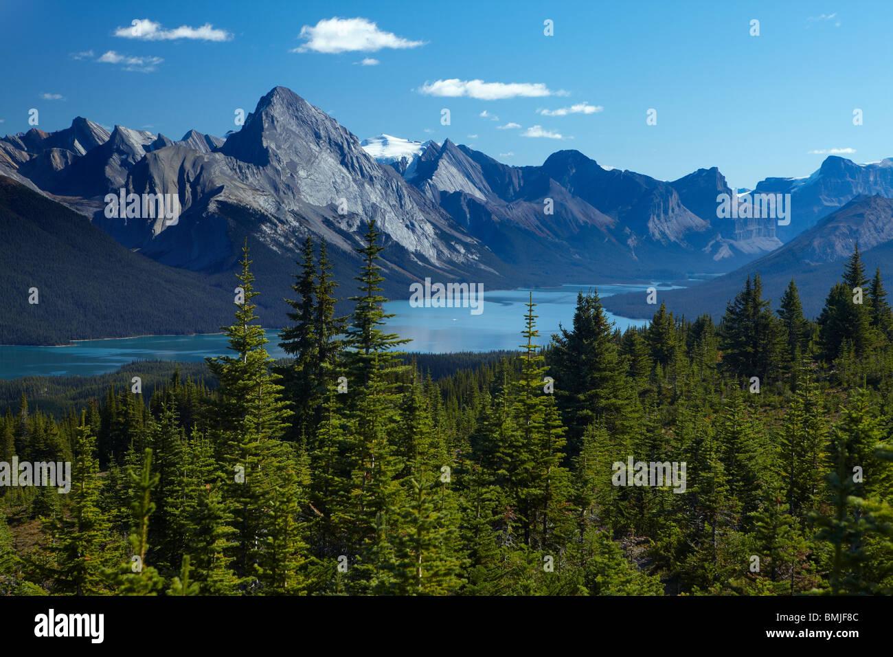 El lago Maligne desde Bald Hills, el Parque Nacional de Jasper, Alberta, Canadá Imagen De Stock