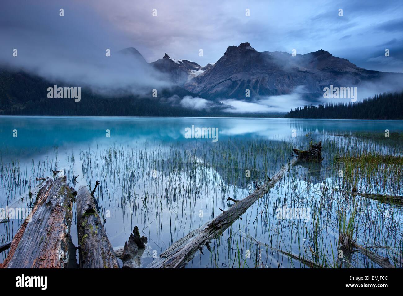Lago Esmeralda al amanecer con los picos del Presidente Gama más allá, el Parque Nacional Yoho, British Imagen De Stock